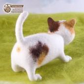 Кот Томми